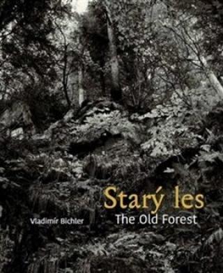 Starý les / The Old Forest - Vladimír Bichler