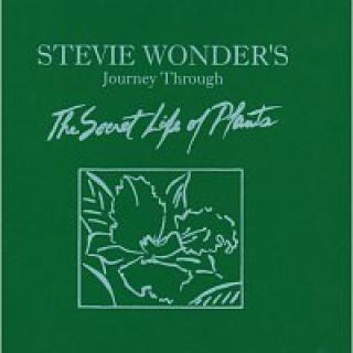 Stevie Wonder – Journey Through The Secret Life Of Plants CD