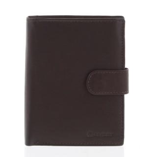 Větší pánská hnědá kožená peněženka se zápinkou - Diviley Heelal pánské