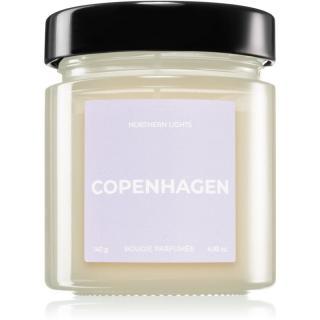 Vila Hermanos Apothecary Northern Lights Copenhagen vonná svíčka 140 g 140 g