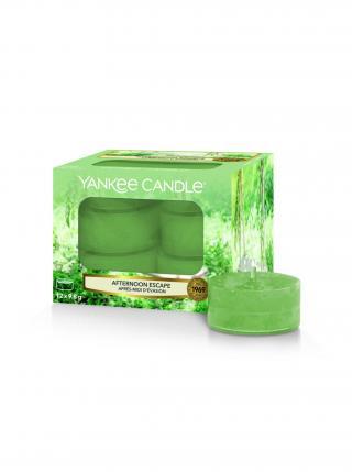 Yankee Candle vonné čajové svíčky Afternoon Escape zelená